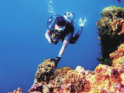 深蓝诱惑——潜水圣地